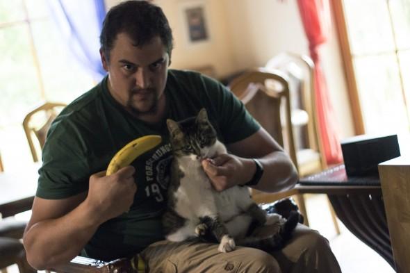 Bedrohte Katze
