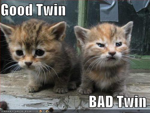 i-11e125c5e109510f788693afdb5a775c-funny-pictures-good-and-evil-kittens-thumb-500x375.jpg
