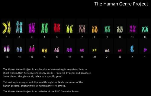 i-5ee04d7c4e805f123d0596948812c6cd-humangenreproject-thumb-500x316.jpg