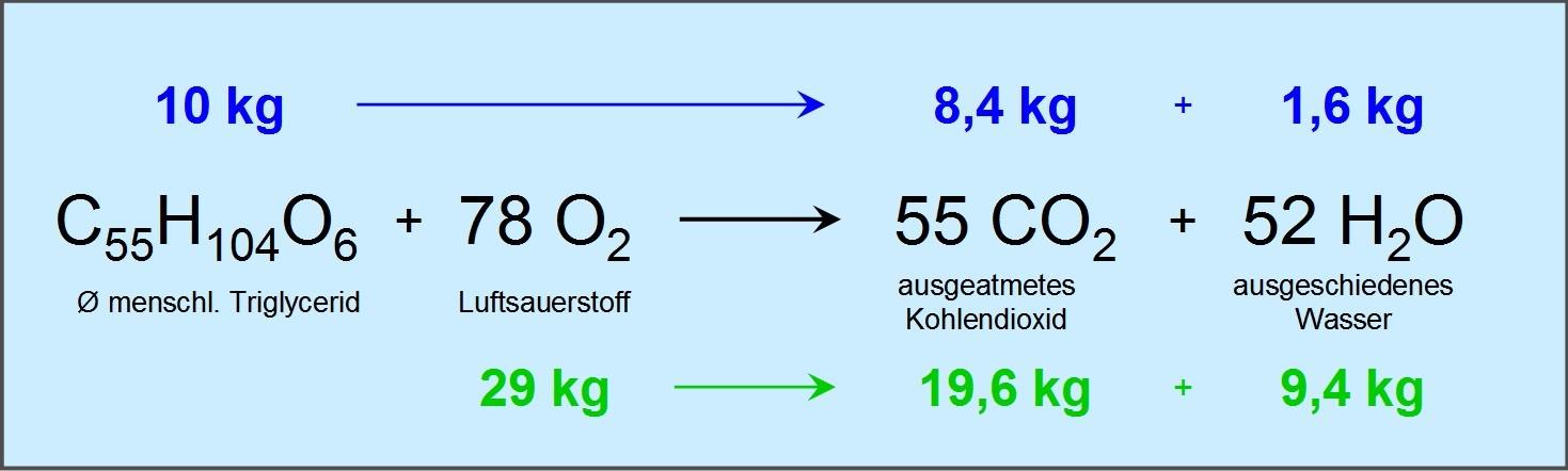 Ph Meter Streng 2017 Neue Ankunft Tragbare Meter Ph Tester Boden Detektor Wasser Feuchtigkeit Licht Test Meter Sensor Für Garten Pflanze Blume