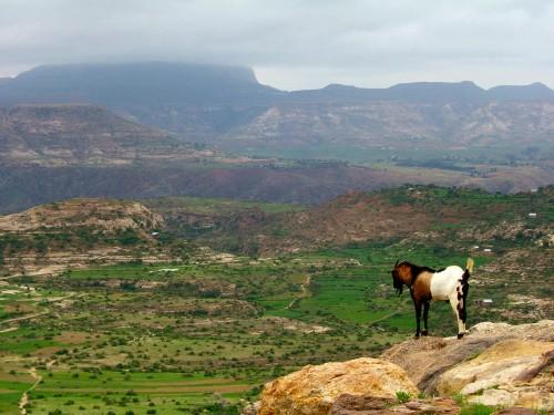 Das äthiopische Hochland (CC-BY-SA 2.0)