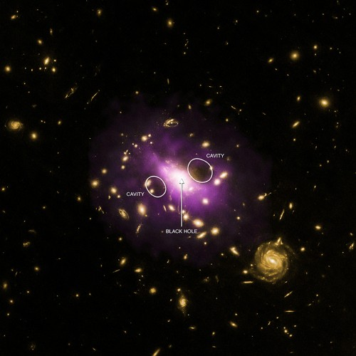 Bild: X-ray: NASA/CXC/Stanford/J.Hlavacek-Larrondo et al, Optical: NASA/ESA/STScI/M.Postman & CLASH team