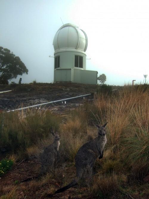 Das kleine SkyMapper-Teleskop in Australien hat den ältesten Stern entdeckt (Bild: Irida, CC-BY-SA 3.0)