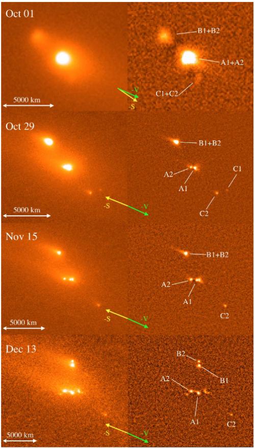 Bild: Jewitt et al, 2014