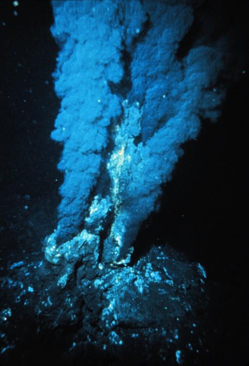 Leben ist zäh und kann sogar tief im Ozean in extrem heißen Wasser überleben. Warum nicht auch im All? (Bild: NOAA)