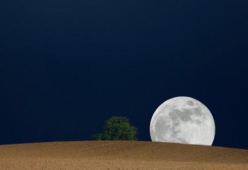 Der Mond ist auf jeden Fall da und schön, egal wo er her kommt! (Bild: Thomas Fietzek, CC-BY-SA 3.0)