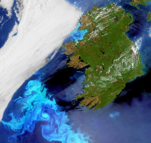 Algenblüte vor Irland (Bild: ESA)