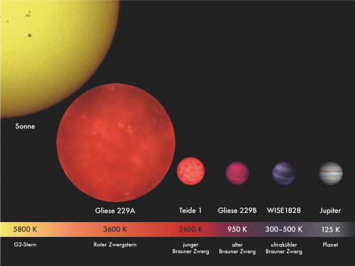 Größenvergleich einiger Sterne und brauner Zwerg (Bild: MPIA/V. Joergens, CC-BY 3.0)