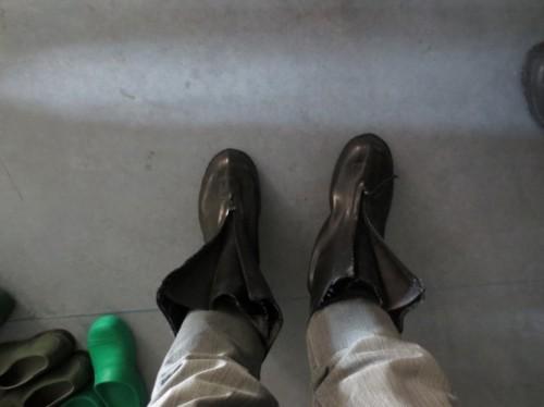 Anderswo muss man Schutzhelme oder Laborbrillen aufsetzen. Im Fischlabor am AWI sind es Gummistiefel.