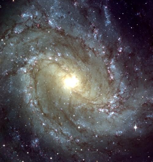 Spiralgalaxie Messier 83 (Bild: ESO