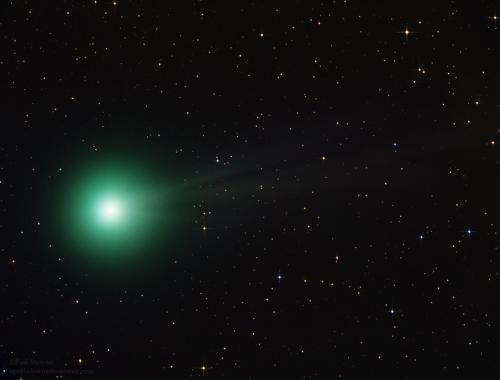 Komet Lovejoy im Dezember (Bild: Paul Stewart, CC-BY-SA 2.0)
