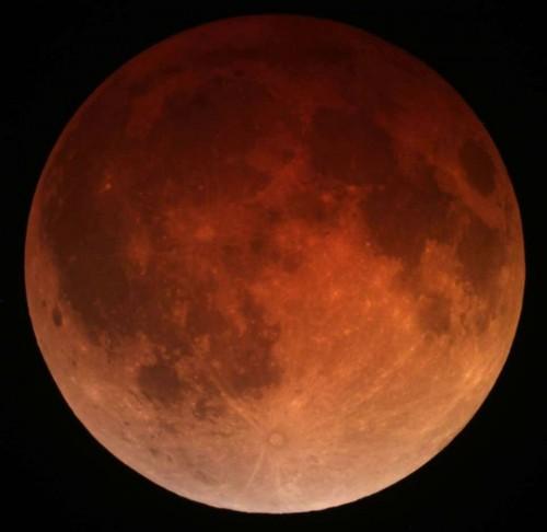 Roter Mond bei der Finsternis am 15. April 2014 (Bild: Tomruen, CC-BY-SA 3.0)
