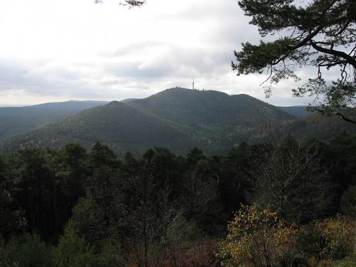Der Pfälzerwald! (Bild:  CC-BY-SA 3.0)