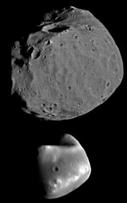 Phobos und Deimos im Größenvergleich (Bild: NASA)