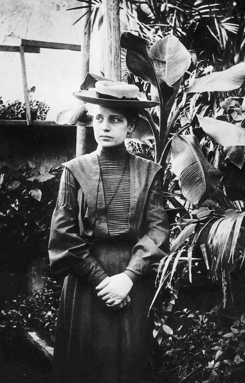 Lise Meitner, 1906 (Bild: gemeinfrei)