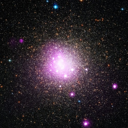 Der Sternhaufen NGC 6388. Dem optischen Bild sind die Messungen im Röntgenlicht in pink überlagert (Bild - X-ray: NASA/CXC/IASF Palermo/M.Del Santo et al; Optical: NASA/STScI)