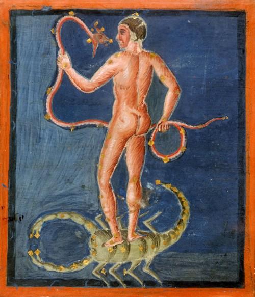 Der Schlangenträger surft auf dem Skorpion (Bild aus dem 9. Jahrhundert, gemeinfrei)