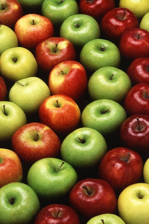 Äpfel! Riechen gut - aber warum? (Bild: USDA, gemeinfrei)