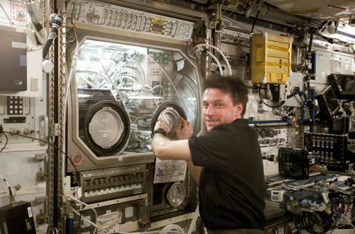 Astronaut Michael Foale macht Experimente in der Microgravity Science Glovebox (MSG), April 2004 (Bild: NASA)