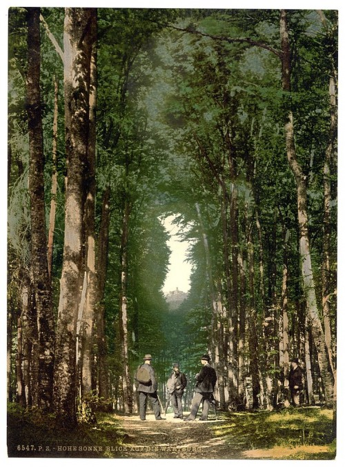 Kennen sie das mysteriöse Geheimnis des Thüringer Waldes (Bild: Library of Congress, Public Domain)