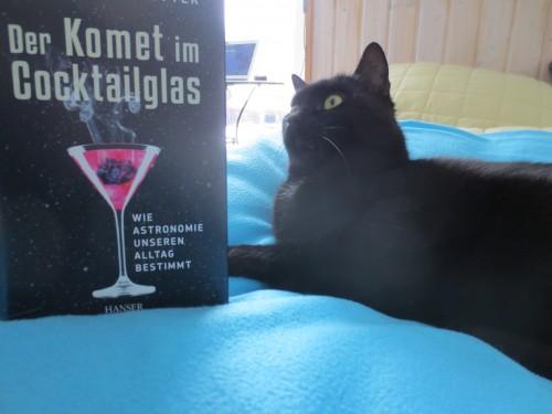 Selbst Katzen informieren sich, bevor sich Boulevardmedien einfach so glauben...