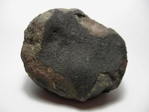 """Ein """"Kohliger Chrondit""""; der Überrest eines C-Typ-Asteroiden - ideal für den Garten! (Bild: Herbert Raab, CC-BY-SA 3.0)"""