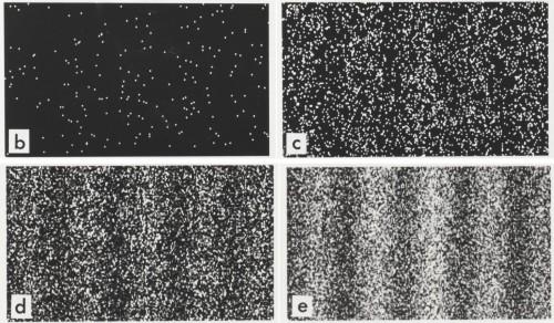 Die Verteilung des Elektrons beim Doppelspaltexperiment zeigt schon nach wenigen Tausend Durchführungen das Interferenzbild einer Welle. Typisch dafür sind die Ausbildung von Minima und Maxima. Bild: Dr. Tonomura and Belsazar, https://commons.wikimedia.org/wiki/File:Double-slit_experiment_results_Tanamura_four.jpg CC-BY-SA 3.0