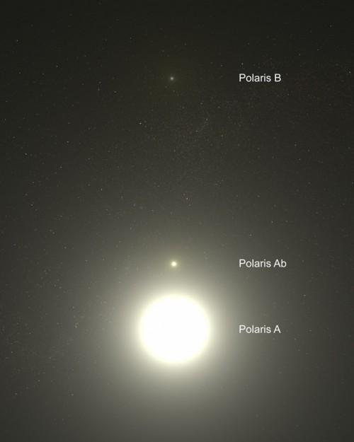 Künstlerische Darstellung der Sterne im Polarstern-System (Bild: NASA, ESA, G. Bacon (STScI))