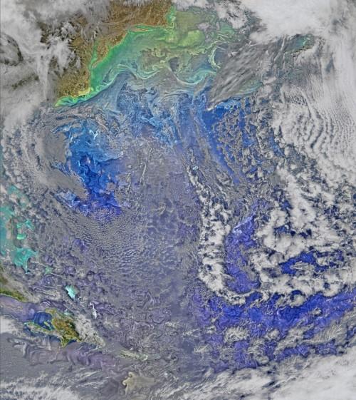Strömungen über dem Atlantik (Bild: NASA/Ocean Biology Processing Group, NASA Goddard Space Flight Center)
