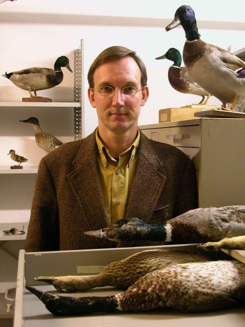 Kees Moliker und seine Enten (Bild: Kees Moliker, CC-BY-SA 3.0)