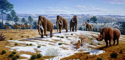 "Früher war das Klima anders (Caitlin Sedwick (1 April 2008). ""What Killed the Woolly Mammoth?"". PLoS Biology 6 (4): e99)"
