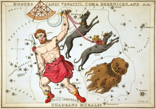 Sternbild Bärenhüter (Bild: Adam Cuerden, Public Domain)