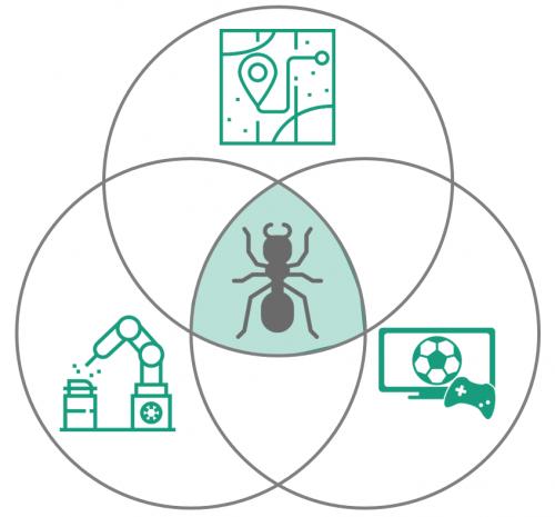 Visualisierung der Überschneidung – alternativ ein Ameisen-Mandala zum Ausmalen