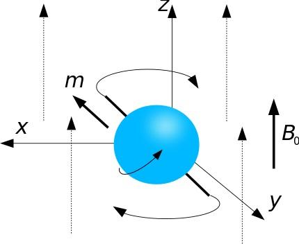 Präzessionsbewegung eines Atomkerns (Franz Wilhelmstötter, MRT Praecession Rotation, CC BY-SA 3.0)