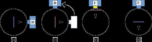 Abb. 14: Beispiel für eine maximal unscharfe Spin-Messung (b) nach einer Drehung des Messapparates um 90°.