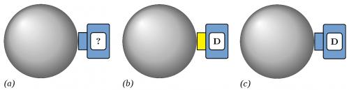 Abb. 9: Die wesentlichen Schritte einer Spin-Messung aus Sicht des Messapparats, der Messapparat hat dabei definitionsgemäß keine Kenntnis von der Scheibe im Inneren der Kugel.