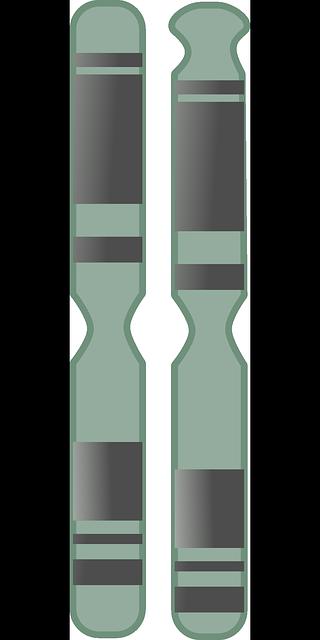 Dies sind zwei Chromosomen. Die Enden der Chromosomen sind die Telomere (Bild: Public Domain)