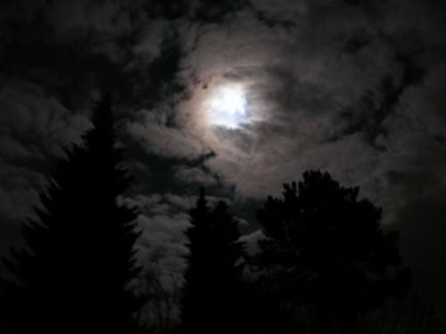 Wenn der Mond am Himmel steht... Für uns Erdlinge erscheint der Mond verwoben mit dem Leben hier auf der Erde. Urheber: Eigene Aufnahme
