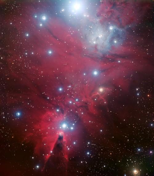 NGC 2264 (Bild. ESO)