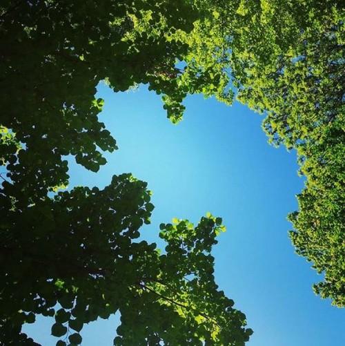 Blauer Himmel über Jena