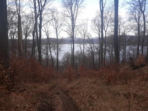 Laacher See: Sieht aus wie ein See, ist aber ein Vulkan.