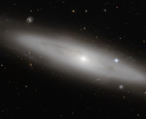 Die Lentikular-Galaxie NGC 4866, 80 Millionen Lichtjahre weit weg (Bild: ESA/Hubble & NASA, Gilles Chapdelaine)
