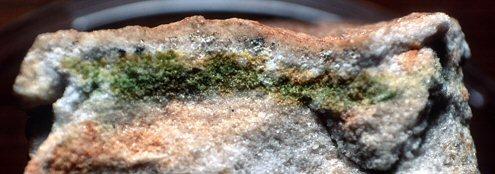 Endolithische Bakterien und Algen bilden eine grüne Schicht einige mm unter der Oberfläche eines Felsens aus klarem Gestein aus Antarktika. Durch das helle Gestein gelangt Licht für Photosynthese bis in eigene mm Tiefe. Luft und Wasser können durch feine Poren im Gestein eindringen. Der Felsen wurde aufgebrochenen, das Foto zeigt einen Ausschnitt von etwa 5cm Breite. ( Urheber: Guillaume Dargaud.  , Bildrechte: GFDL (self made), Creative Commons Attribution-ShareAlike 3.0 License.)