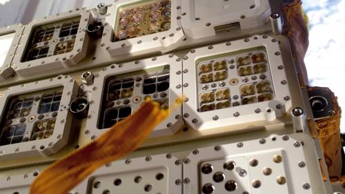"""ISS, Nahaufnahme der Anlage """"Expose R"""" am russischen Swesda-Modul, bestückt mit verschiedenen Organismen. .( ESA; IBMP Moskau; DLR-Institut für Luft- und Raumfahrtmedizin, Köln; Universität Erlangen, Bildrechte: Deutsches Zentrum für Luft- und Raumfahrt (DLR))"""