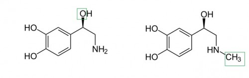 Links: Noradrenalin unterscheidet sich von Dopamin nur durch das grün markierte Sauerstoff-Atom. Rechts: Adrenalin unterscheidet sich von Noradrenalin nur durch ein Kohlenstoff- und zwei Wasserstoff-Atome.