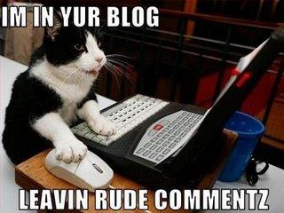 i-69ef9888a95351d2ebdc392ae51b1d91-lolcat_blog_comments.jpg