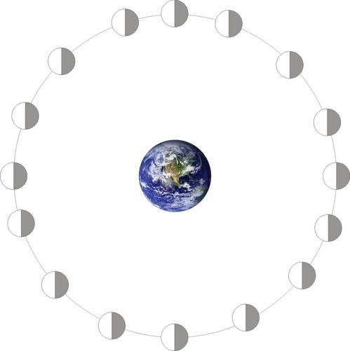 i-769670bbe7cee4a53e17b4f52687660c-mondrotiernicht-thumb-500x501.jpg