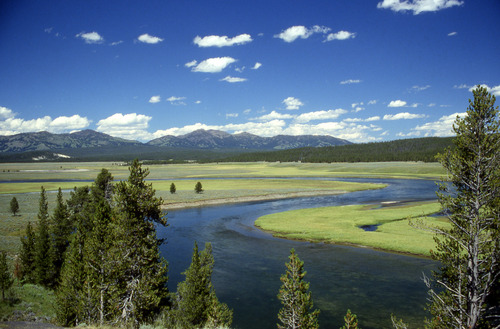 i-8ca4ab8ab3dac39c021d1e7ec4faaef1-Yellowstone_River_in_Hayden_Valley-thumb-500x329.jpg