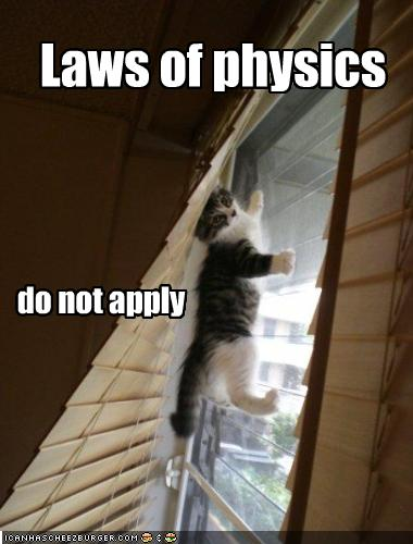 i-b2380cad1054ba66efcdc5755e7c976c-funny-pictures-laws-do-not-apply-to-kitten.jpg