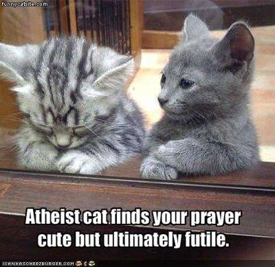i-c566e155c168fbc83745b9c545a72d77-atheist_cat.jpeg